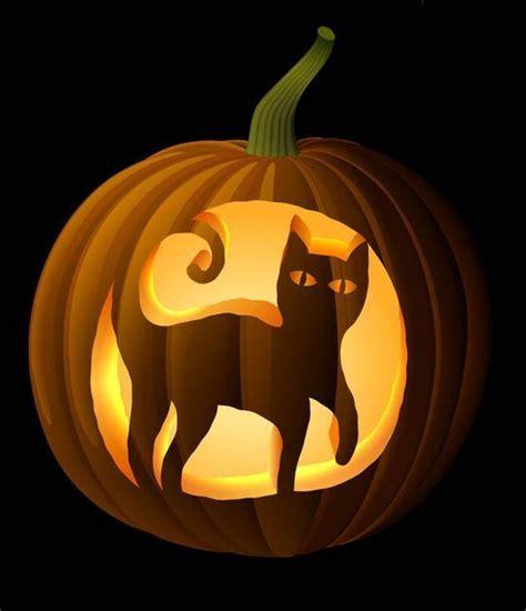 cat pumpkin ideas 17 of 2017 s best cat pumpkin carving ideas on pinterest cat pumpkin cheshire cat pumpkin and