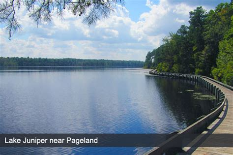 pageland hotels find hotels  pageland sc  reviews