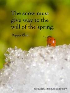 83 best images ... Spring And Snow Quotes