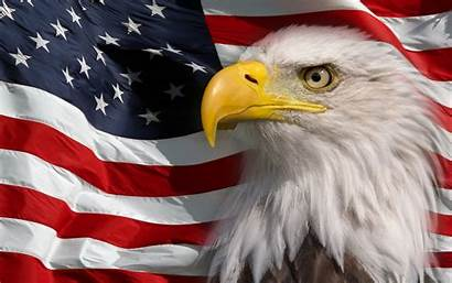 Eagle Flag Bald American America Symbol Pc