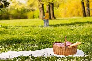 Picnic, Basket, On, The, Blanket, Children, Playing, In, The, Background, Stock, Photo, U0026, More, Pictures, Of