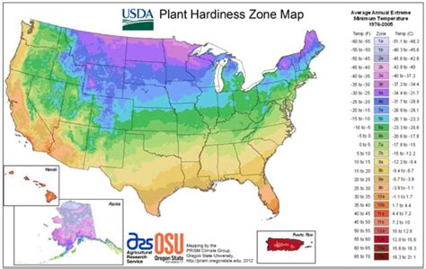 How To Understand Usda Hardiness Zones