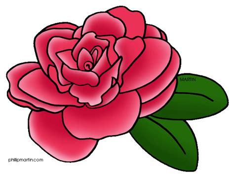 camellia clipart clipground