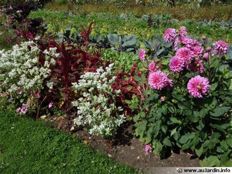 cuisiner les insectes planter des fleurs au potager