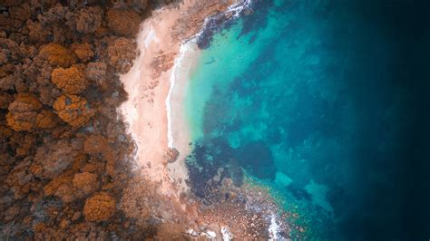 wallpaper reef beach australia