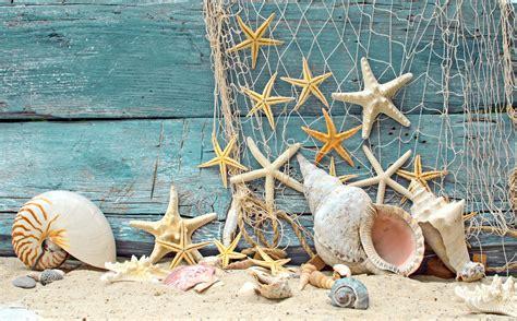 fond d 39 écran coquillages étoiles de mer filet bois de