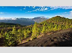 Vliegtickets La Palma tegen de beste prijs met Expedianl