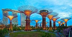 Biomimicry & Design: Lotus Building & Super-Trees of