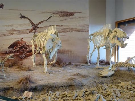 Agate Fossil Beds by Agate Fossil Beds National Monument The Travel