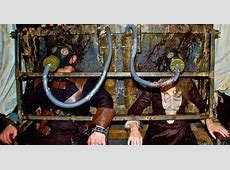 McKamey Manor The Most Extreme Haunted House in the