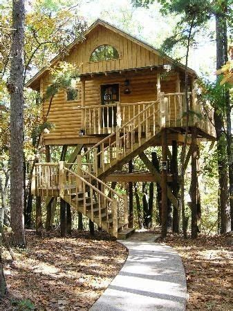 Lovely Adult Tree House Plans  New Home Plans Design
