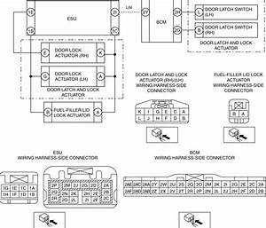 Help With Central Door Lock System Wiring Diagram