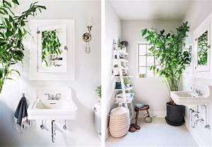 la fabrique a deco des plantes dans la salle de bain With salle de bain design avec décoration tropicale anniversaire