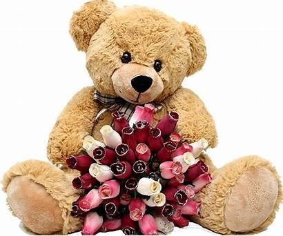 Teddy Bear Bears Crying Wallpapers Emotions Pngimg