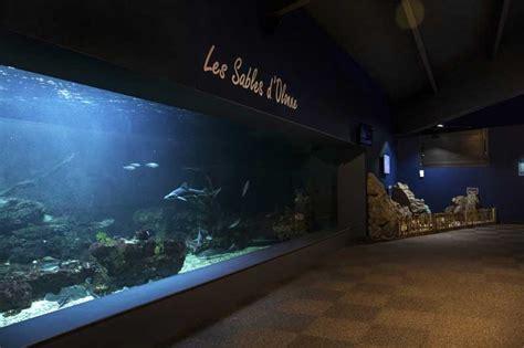 aquarium a visiter en la visite guidee ateliers p 201 dagogiques aquarium de vend 233 e