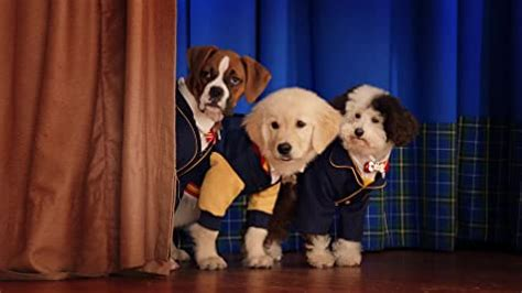 pup academy tv series