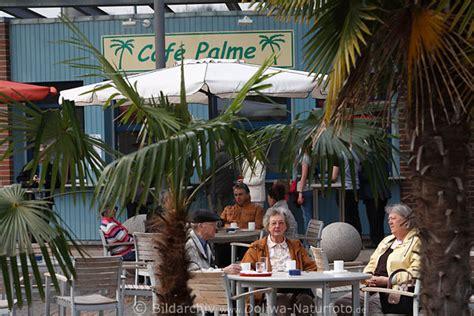 Botanischer Garten Hamburg Cafe Palme hamburg botanischer garten klein flottbek caf 233 palme