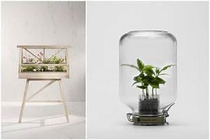 Serre D Intérieur : 14 id es pour d corer sa maison avec des plantes vertes ~ Preciouscoupons.com Idées de Décoration