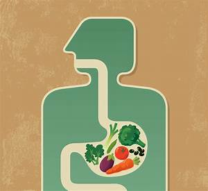 8 Easy Ways To Support Digestion Naturally