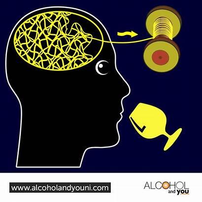 Brain Alcohol Damage Related Arbd Northern Ireland