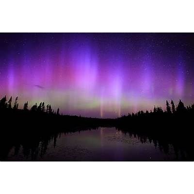 Experience the Northern Lights in MinnesotaVisit Cook