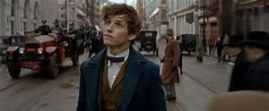 Fantastic Beasts and Where to Find Them: 4 Sequels Planned ...