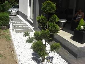 Garten Pflanzen : garten balkonarrangements fragen bilder pflanz und pflegeanleitungen rund um das thema ~ Eleganceandgraceweddings.com Haus und Dekorationen