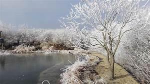 Teich Winterfest Machen : freudengarten so wird der teich im herbst winterfest ~ Buech-reservation.com Haus und Dekorationen