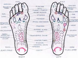 31 Printable Foot Reflexology Charts  U0026 Maps  U1405 Template Lab