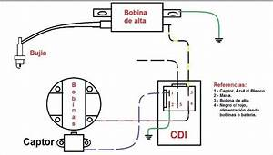 Taotao 49cc Scooter Wiring Diagram