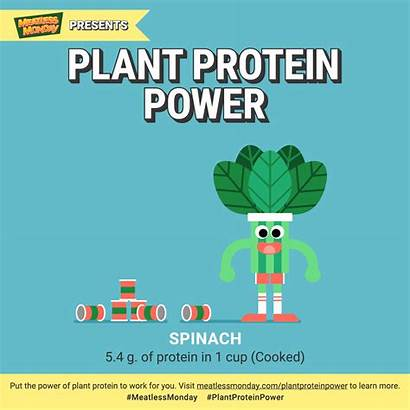Protein Plant Monday Power Meatless Vegan Meatlessmonday