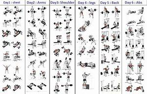 Top 5 Day Workout Routine For Man Bodybuilding Program