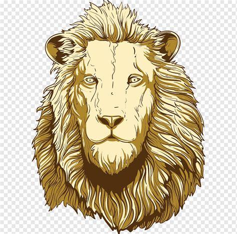 Gambar Ilustrasi Hewan Singa Gambar Ilustrasi