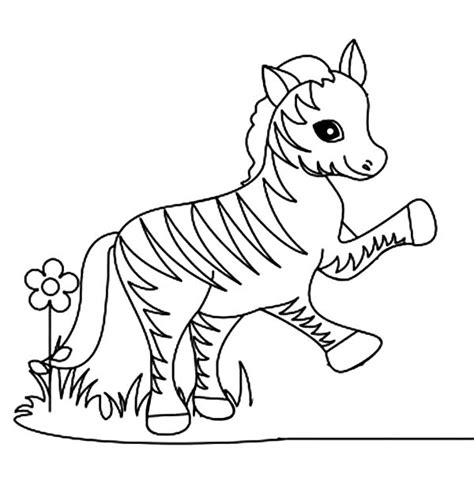 coloring pages zebra coloring page  vocal