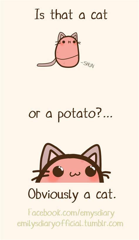 catato kawaii potato cute potato