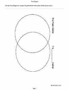 Venn Diagram Graphic Organizer For 4th