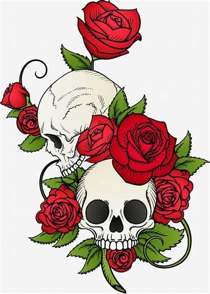 Skull Tattoo Rose Drawing Clipart Skulls Flowers