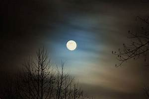 8 things to know about the Full Worm Moon : TreeHugger  Full