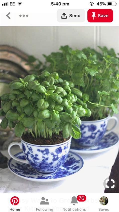 pin de julia anderson en  home design diy herb garden