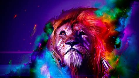 Colourful Animal Wallpaper - animal colourful
