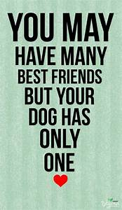 Dogs are friends for life. We have 2 dogs & 2 cats ~ the ...