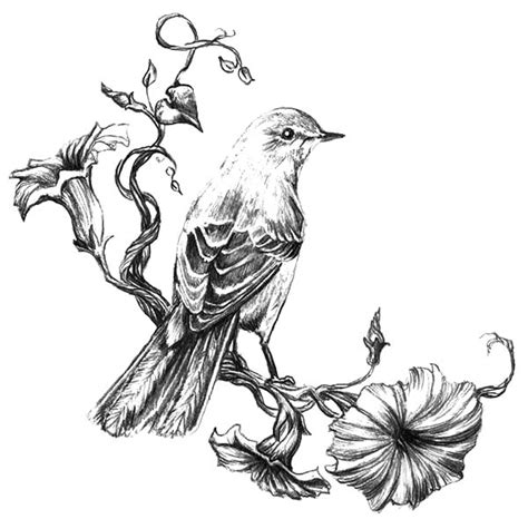 painting mockingbird coloring pages color luna