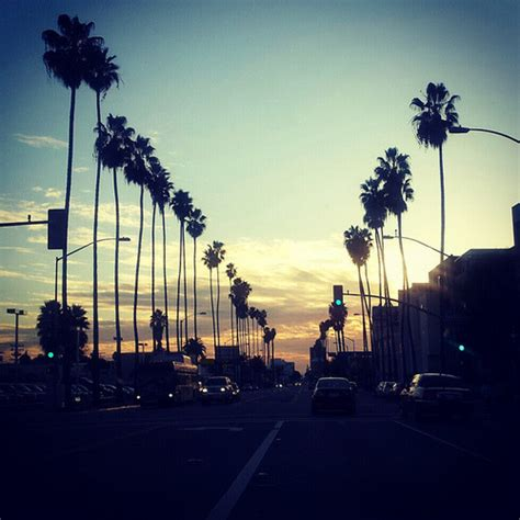 california love  tumblr