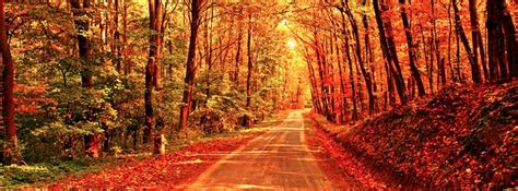 Fall / Autumn - Autumn Path - Free Facebook Covers ...