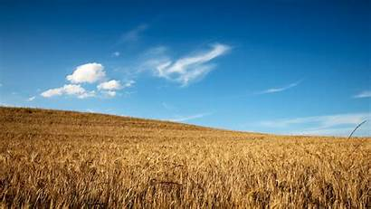 Wheat Field Wallpapers Fields Wonderful Ii Hdwallsource