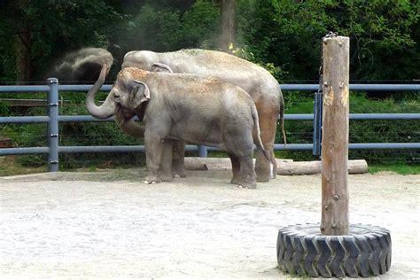 habitats habitat zoos