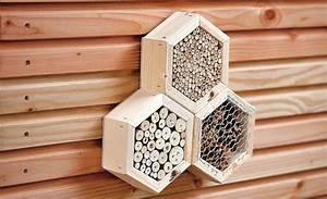 Insektenhotel Selber Bauen Anleitung : insektenhotel kaufen bees in the garden pinterest insekten garten und haus ~ Michelbontemps.com Haus und Dekorationen