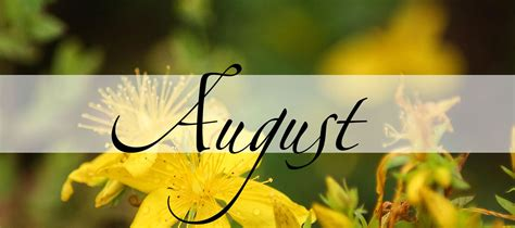 August, der Monat des Sammelns - Practical Magic Magazin