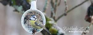 Vogelfutter Selbst Herstellen : vogelfutter rezept great frischkse vogelfutter rezept bild nr with vogelfutter rezept selbst ~ Orissabook.com Haus und Dekorationen