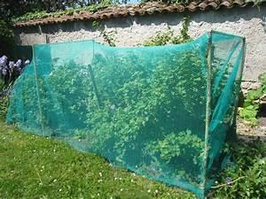 Filet De Protection Jardin : vente d 39 innovations filets de protection jardin innovation ~ Dallasstarsshop.com Idées de Décoration